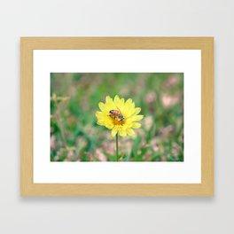 Nature In April - 2 Framed Art Print