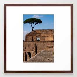 Palatine Hill Framed Art Print