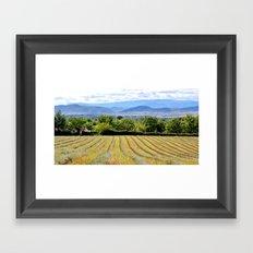 Entre montagnes et lavandes Framed Art Print