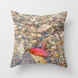 Red Leaf Stuck Among Watery Rocks Throw Pillow