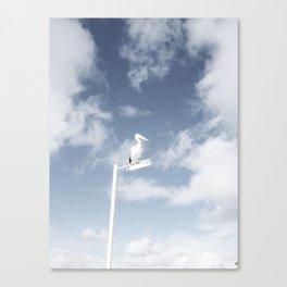 Bird Canvas Print