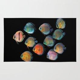 Wild discus fish Rug