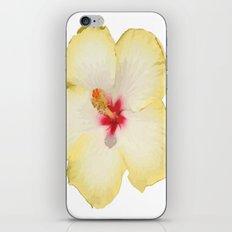 Yellow Hibiscus Flower Vector iPhone Skin