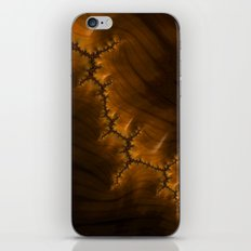 Crack iPhone & iPod Skin