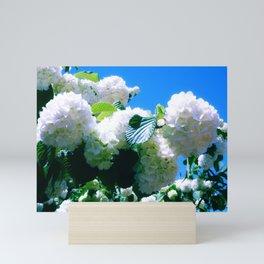 Blue Snowball Branch Mini Art Print