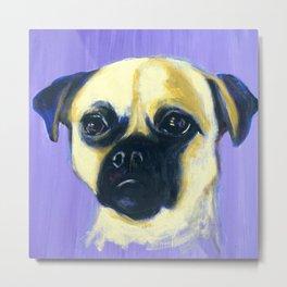Portrait of a Pug Metal Print