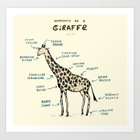 Anatomy of a Giraffe Art Print