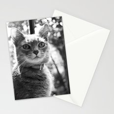 Le chat Stationery Cards