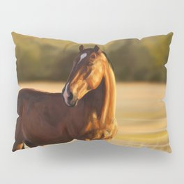 Looking of to the sunset Pillow Sham