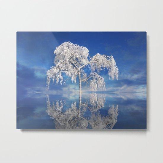 Snowy Winter Tree Metal Print