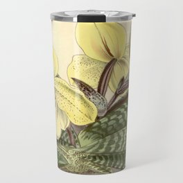 Paphiopedilum concolor Travel Mug