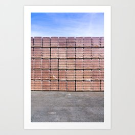 Another Brick For The Wall Art Print