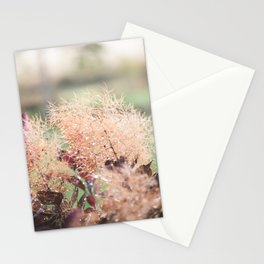 Frothy Blossom Stationery Cards