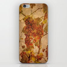 The most noble and challenging of fruits iPhone & iPod Skin