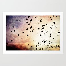 Bird's Flyin' High Art Print