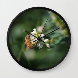 Honey Bee on Green Wall Clock