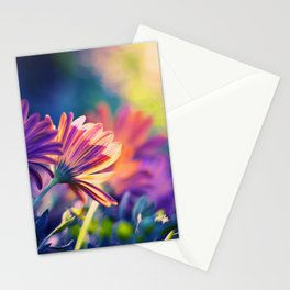 Colorful Days Stationery Cards