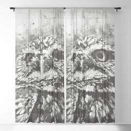 owl portrait 5 wsbw Sheer Curtain