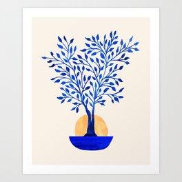 Indigo Ficus Sunrise Art Print
