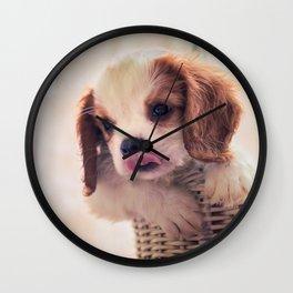 Fuzzywazzi Wall Clock