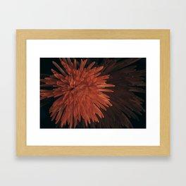 Double burst Framed Art Print