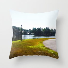 The Lakeshore from home Throw Pillow