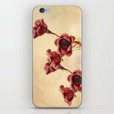 Ruby Red iPhone & iPod Skin