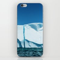 labrador iPhone & iPod Skins featuring Labrador Iceberg by Shaun Lowe