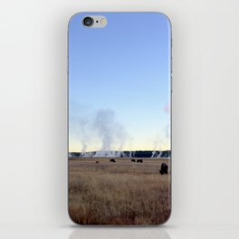 Bison at Sunrise iPhone Skin