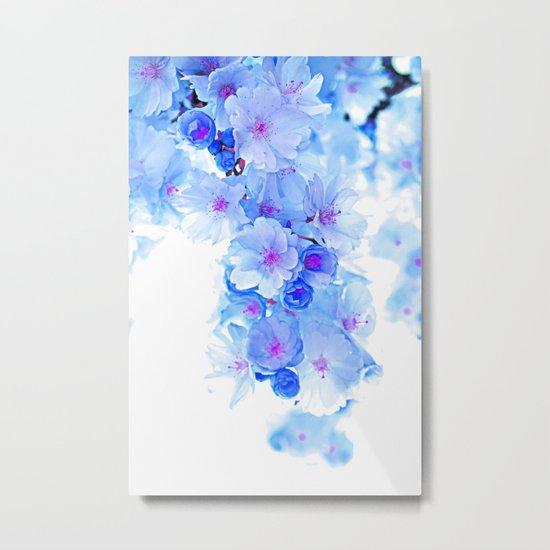 Cherry Blossom.Blue Metal Print