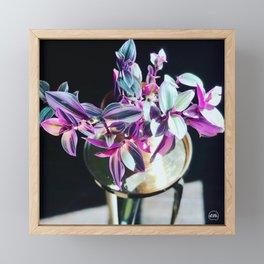 Black Nanounk Framed Mini Art Print
