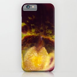 Painted Ladyslipper Orchid iPhone Case