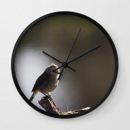 Birds from Pantanal chibum Wall Clock