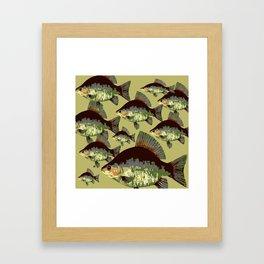 Sun Fish Framed Art Print
