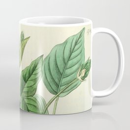 Faboideae Coffee Mug