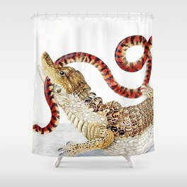 Spectacled Caiman and a False Coral Snake by Maria Sibylla Merian c.1705-10 // Wild Animals Decor Shower Curtain