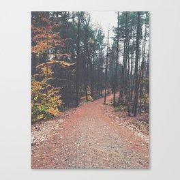 Autumn 17 Canvas Print