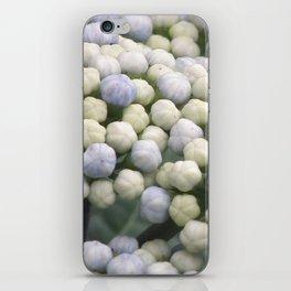 Blue Hydrangea iPhone Skin