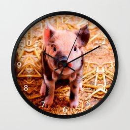 Cute Baby Piglet Farm Animals Babies Wall Clock