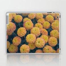 Autumn All Over Sunshine Chrysanthemums -- Fall Botanical Laptop & iPad Skin