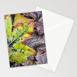 Rainy Leaves. Forest Dreams Stationery Cards
