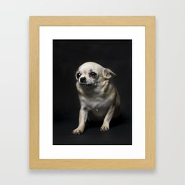 DOGS AND CULTURE COLLIDE Framed Art Print