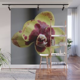 Gather 'Round Wall Mural