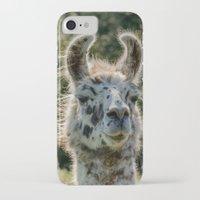llama iPhone & iPod Cases featuring Llama by LudaNayvelt