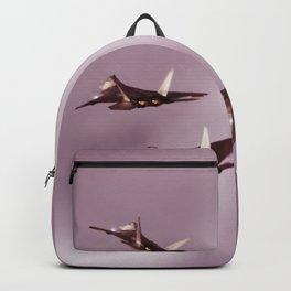 f35 Backpack