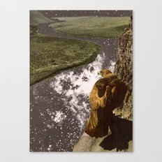 Full of Stars Canvas Print
