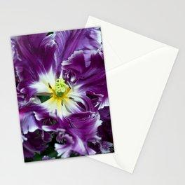 Purple Parrot Tulips of Keukenhof Stationery Cards