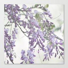 Wisteria Lavender Canvas Print