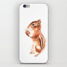 Chipmunk Wizard iPhone Skin