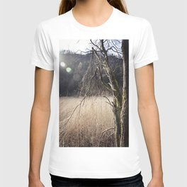 A big leafless tree in a swamp T-shirt